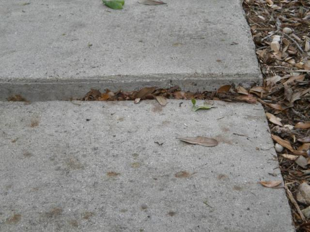 Driveway differntial seperation, N. Ft. Myers, Fl.